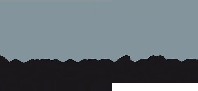 Lynx Médias
