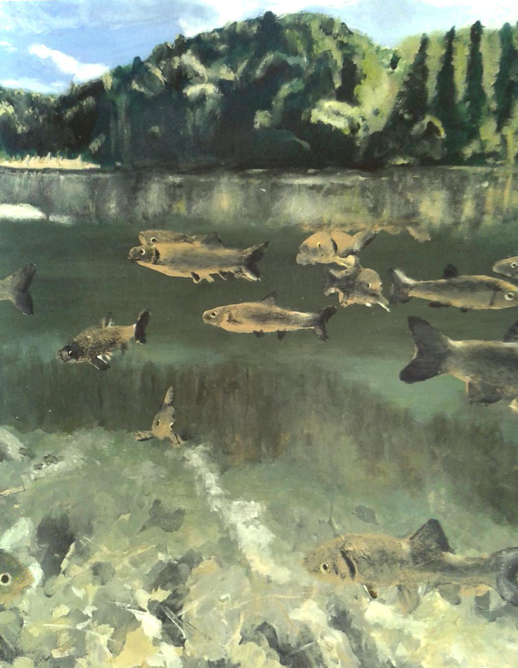 Avec-poissons