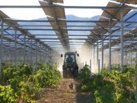 L'agrivoltaïsme s'organise